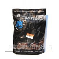 Big Baiting Boilies - Empire Scopex Squid - 20 mm, 5kg